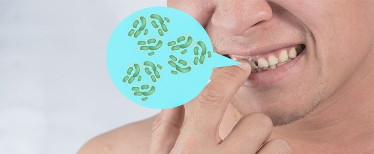 bacteria in mouth